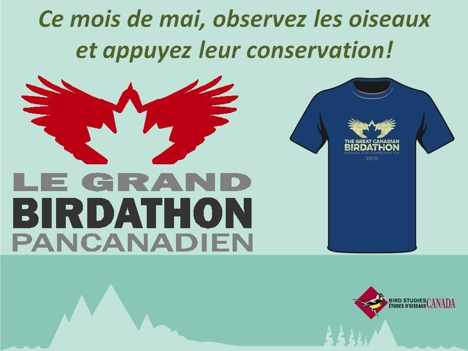 Birdathon Banner